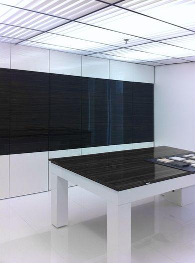 Southland 2x4 Translucent Ceiling Tile