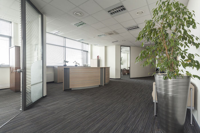 2x2 Mineral Fiber Ceiling Tiles in Office Space