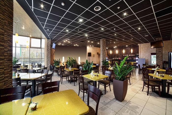 2x2 Black Restaurant Ceiling Tile