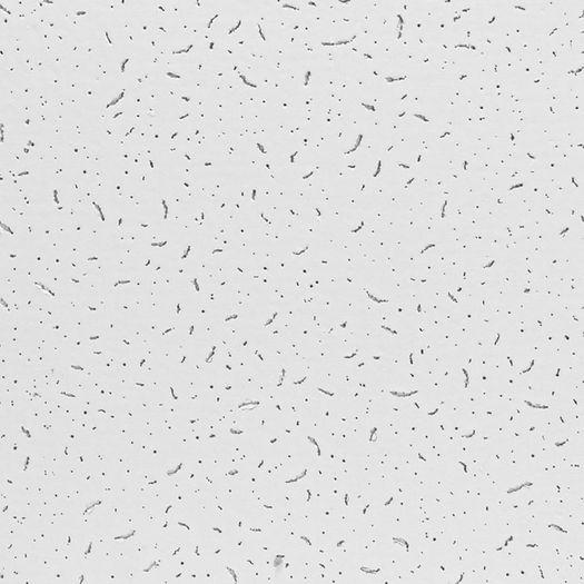 Petra 2x2 Acoustical Ceiling Tiles