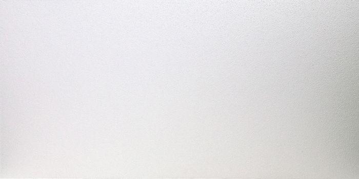 2x4 Fiberglass Ceiling Tile